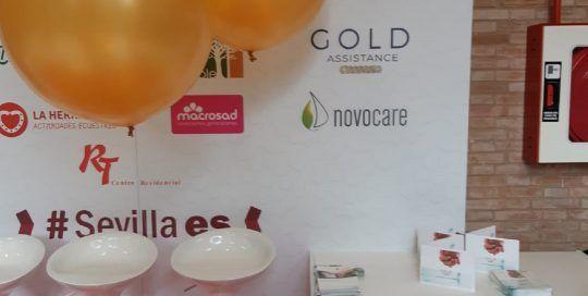 globos golden stand evento